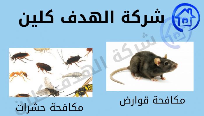شركة مكافحة حشرات بسكاكا